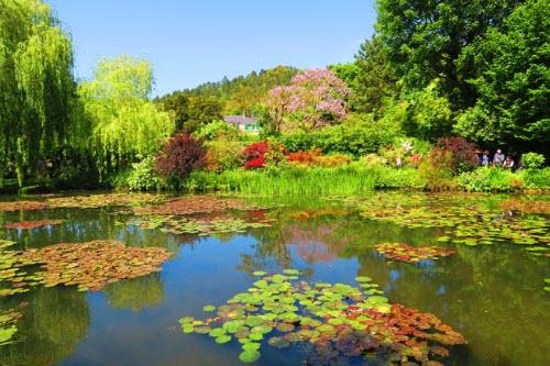 Unit 15: Monet's Garden